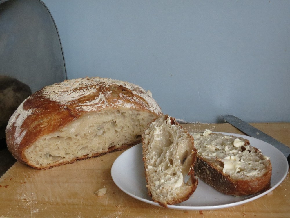 No Knead Bread (1/6)